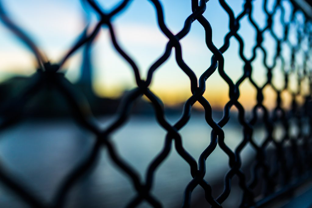 fence-macro-wire-mesh-34209